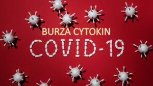 Burza cytokin w COVID-19