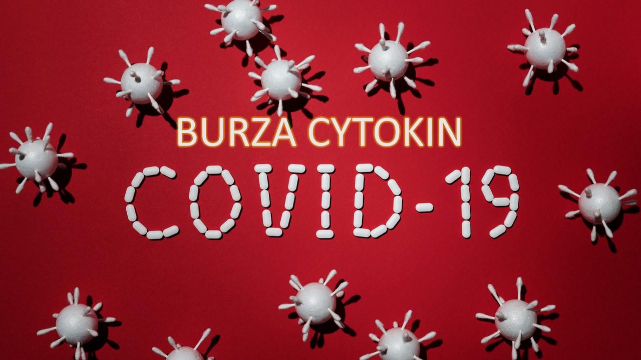 COVID-19, sepsa i burza cytokin